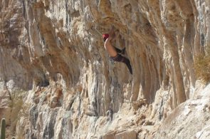 Weekend Whipper: Tufa Trouble