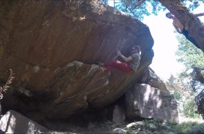Weekend Whipper: From Mantel to Mat on Germ Free Adolescence (V5)