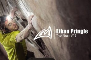 Ethan Pringle - The Nest V15